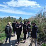 Paseo actividad en la Albufera - Ambientalys