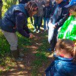 Liberando un pájaro en la actividad familiar en la Albufera - Ambientalys