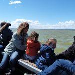 Actividad en familia en la Albufera - Ambientalys
