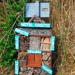Hotel d'insectes a la Albufera - Activitat familiar d'Ambientalys
